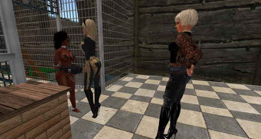 Dana is arrested by Fay at Fortriss Mortice