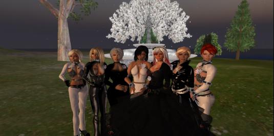 The wedding party: Rayn, Yar, Yasmin, Dio,  Jen, Tyra, Nic