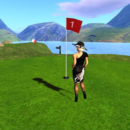 20140223 Dio plays golf_005