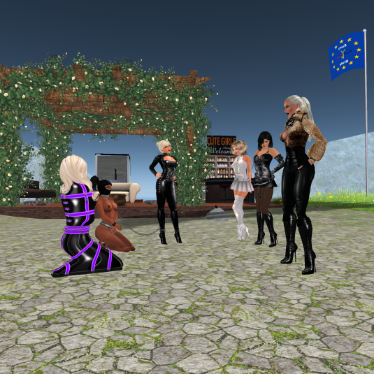 Meeting Mii I met miisiek89 as she's on dA like me. I invited her over to us and she showed us some of her gear - and we had fun looking at her. From left to right: Mii, slave Flo, Dio, Angelique, Jenny, Sarah