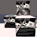 Metmorphosis Escher