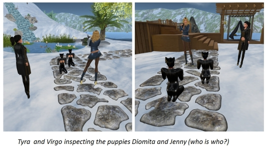 20151227 Tyra and Virgo with the puppies Jenny and Diomita