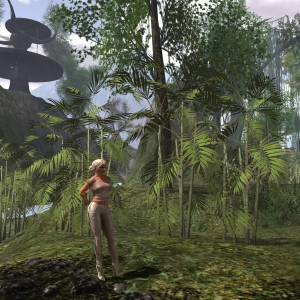 April 8th: A visit to the Jungle of Sin