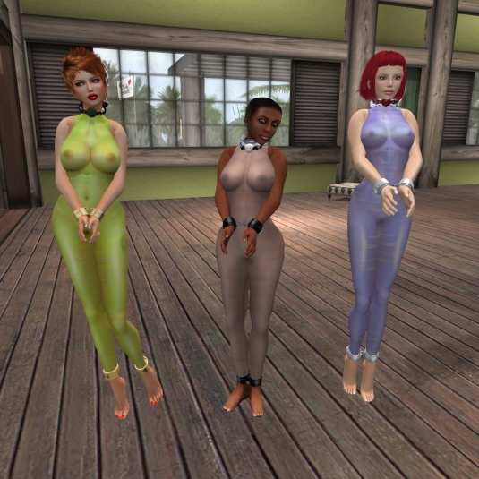 When Mistresses are away: slave Pauline, slave Flo and slave Nina - picture by slave Nina (sgunjin)