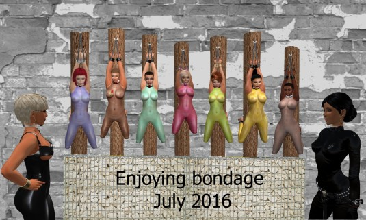 20160724 Enjoying Bondage July 2016