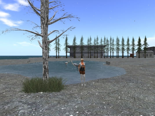 November 5th - Furillen in Second Life: The hotel behind the tree line