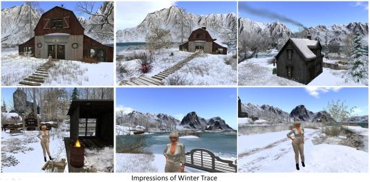 20161119-winter-trace_012