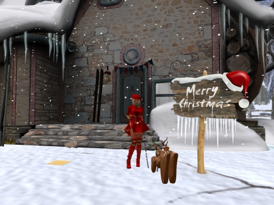 December 8th at BSP: Diomita and puppy at the Christmas sky platform