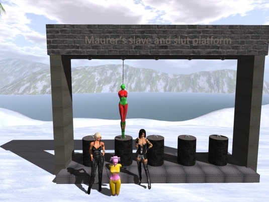 "December 28th: slave D stored and exposed at the new ""Maurer's slave and slut platform"""