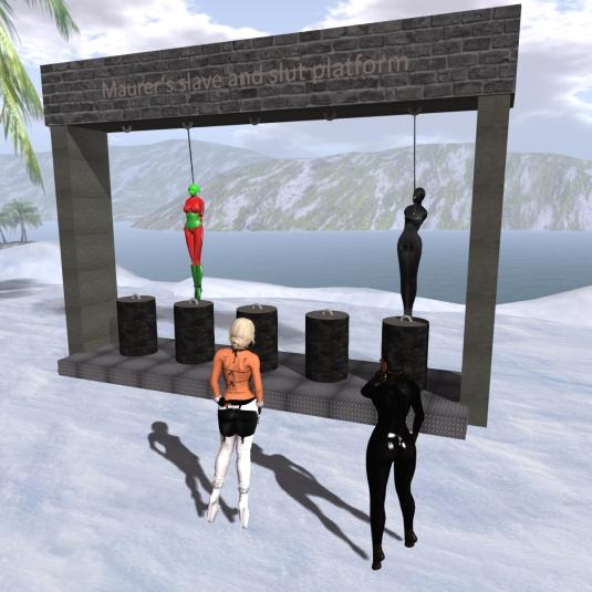 Jan 4th at the platform. Diomita and Sarah looking at slave D and vero