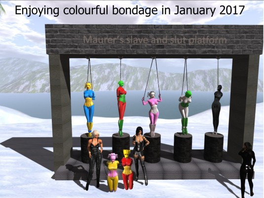 Enjoying colourful bondage in January 2017: slave maid cecy , pussy slave D, slavin maid C, pussy Kitty, vero (from left to right on the platform podests), Diomita, head slave maid Flo, puppy slave Adarra, Mistress Jenny and Madame Sarah (from left to right in front of the platform)